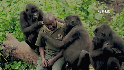 Virunga (Movie) - Main Trailer - Screenshot