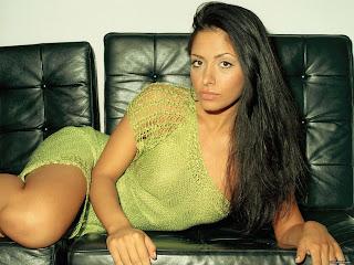 American Born Spanish Actress Sarah Shahi Hot Pictures