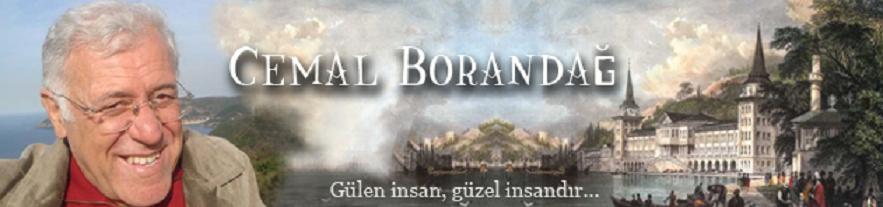 Cemal Borandağ Web Sayfası