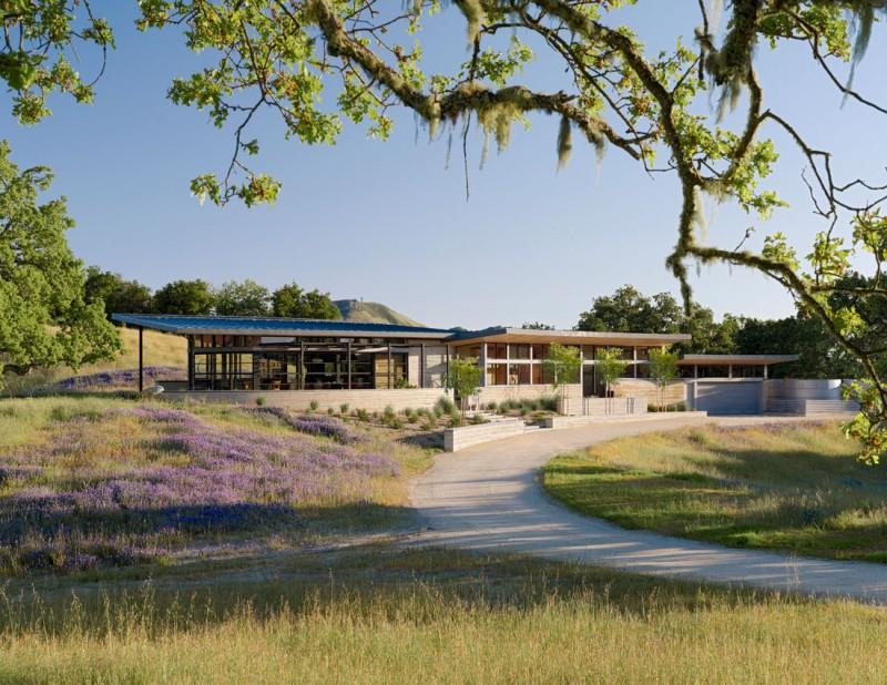 Feldman Architecture Caterpillar House Modern Home