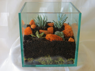 finished product in how to make a terrarium with succulents