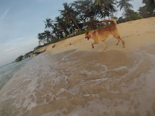 Boom-Patar-Beach-Bolina-Pangasinan-2
