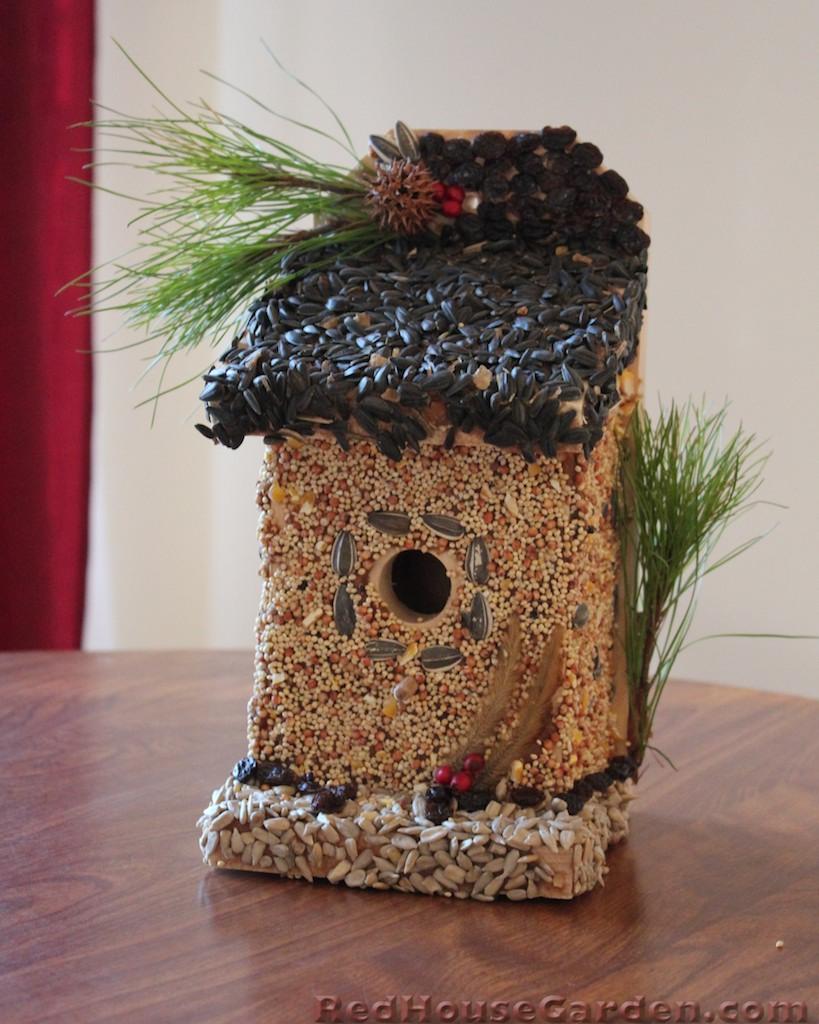 How to make a bird house - Edible Birdhouse