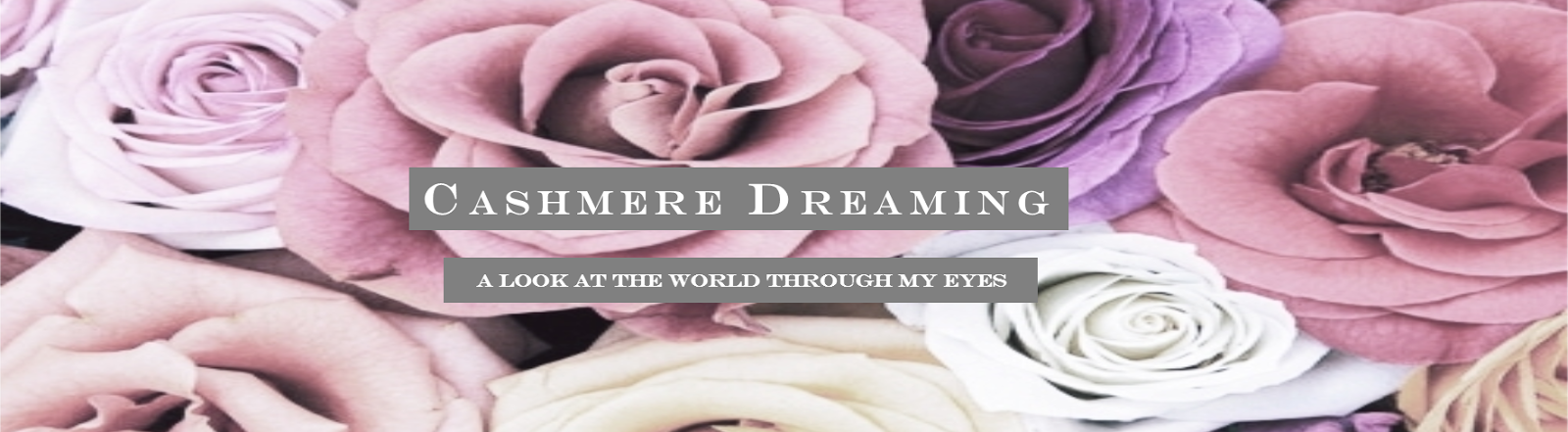 Cashmere Dreaming