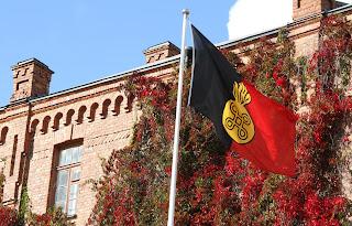 Museon lippu hulmuaa
