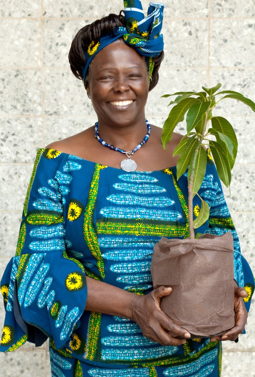 Wangari Mathai: Nobel prize winner, she helped plant a billion trees and paved the way for SGI.