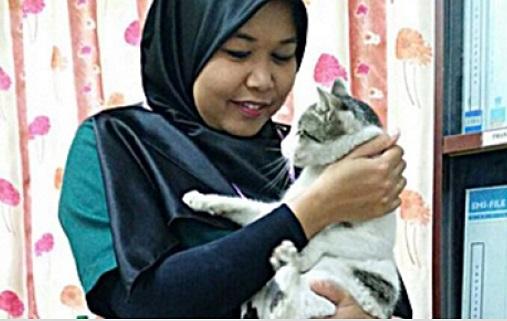 blogger veterinar, blogger pencinta haiwan, penjagaan haiwan, pencinta kucing, cara rawat haiwan