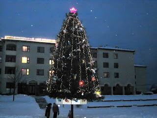 Январь 2010 года наша елка