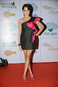 Asmita sood latest photos gallery-thumbnail-2