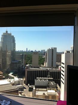 View from Joe's MDACC room