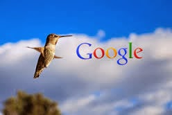 Algoritma Terbaru Dari Google Bernama Hummingbird - Tips SEO
