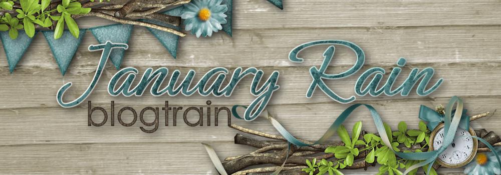 January Rain Blogtrain