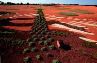 13-El-australiano-Jardín-de-Taylor-Cullity-Lethlean-y-Paul-Thompson