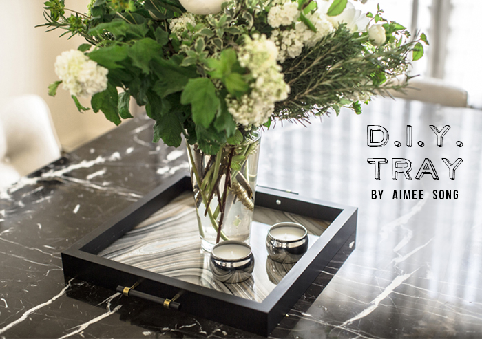 Diy Tray Song Of Style
