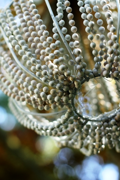 Simply Southern, Sweet, Classy and Sassy: DIY Beaded ...