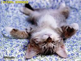 cara tidur yang benar