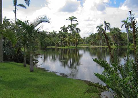 The lowlands (Fairchild Botanic Garden--  the best tropical botanic garden in the world)