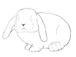 How To Draw A Bunny Step 7