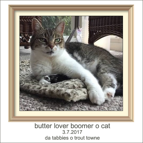 RIP BOOMER