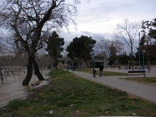Puente de Santiago Crecida del río Ebro 22/01/2013 Zaragoza