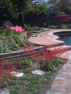 40 Gorgeous Wooden Table Design Room Home also Pervious Porous Concrete moreover Ocean Friendly San Diego County Fair also Patio Covers additionally Design A Rain Garden. on rain garden design for homeowners