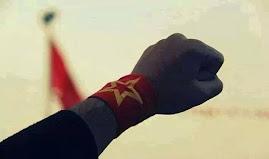 Llamamiento a la solidaridad internacional con el barrio revolucionario Armutlu de Estambul