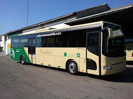 Buses del Mundo. Imagen 10