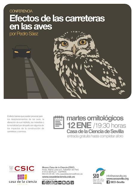 """Conferencia: """"Efectos de las carreteras en las aves"""". Por Pedro Sáez, 12 de Enero de  2016."""