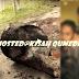 (Foto)Doktor Suspek Utama Pembunuhan Kevin Morais Berjaya Di Kenalpasti