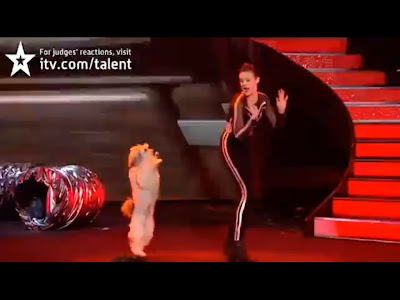 Ashleigh-and-Pudsey-britains-got-talent-2012