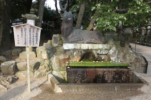Deer Water Fountain at Kasuga Taisha Temple in Nara Park, Japan