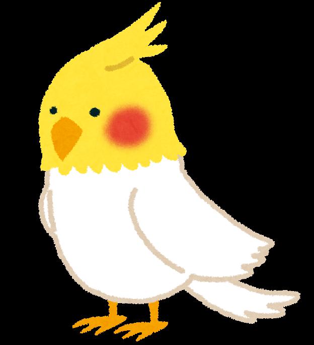 イラスト おかめ イラスト : イラスト(鳥) | 無料イラスト ...