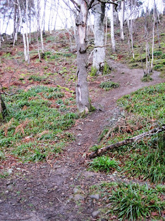 Deeside walks: the footpath to the Hilton Hotel, Ballater
