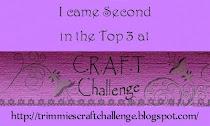 Challenge #206