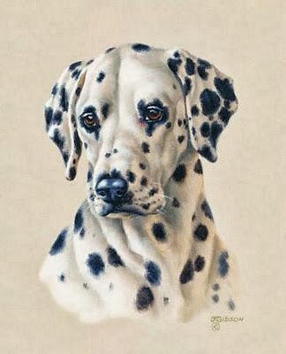 cuadros-de-perros