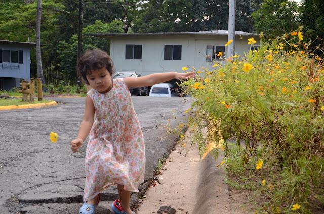 Kecil balancing after picking flower
