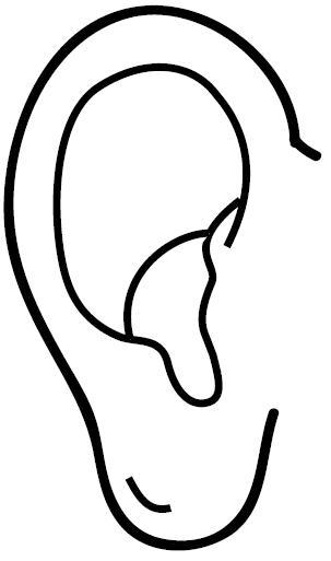 Image Gallery dibujo orejas