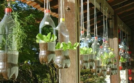 20 macetas recicladas pica pecosa - Macetas hechas con palets ...