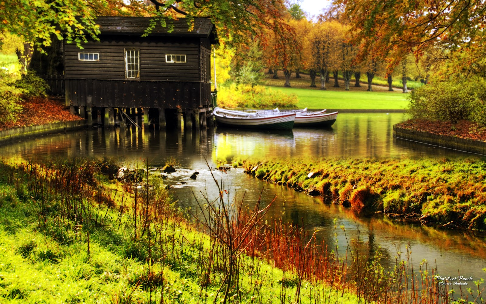 http://1.bp.blogspot.com/-XwxtEHfyGfI/UHmD6_zkBoI/AAAAAAAAAfU/3ODBiM3vcuc/s1600/autumn_hd_top_wallpapers.jpg