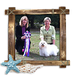 Annabelle; Best in Show 12/2011
