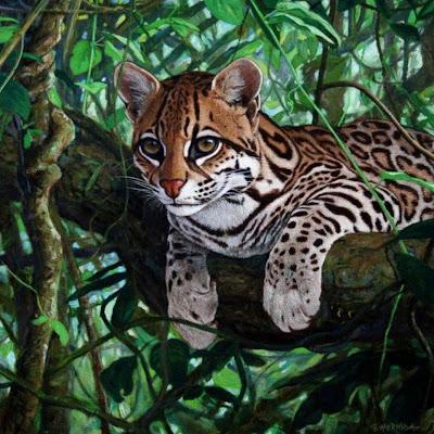 pintura-tigre