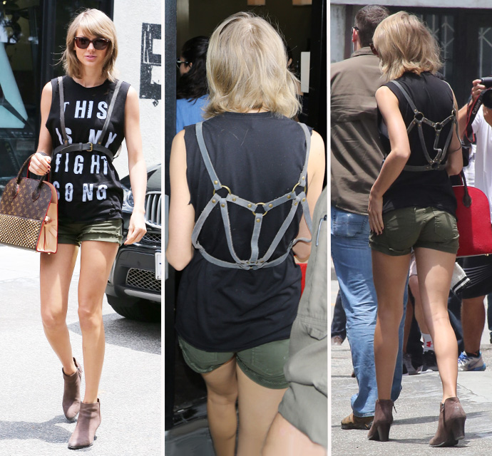 taylor swift harness