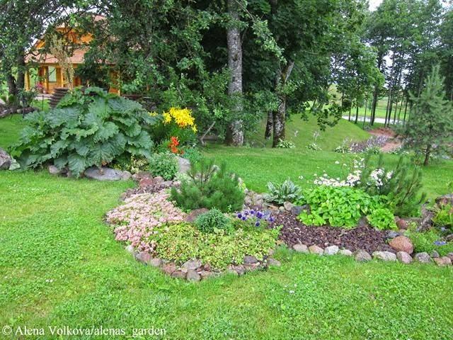 ревень, лилия, живучка, корчма в Литве, деревенский стиль, герань в кашпо, растения в подвесных кашпо, деревянный дом, светильник, старые колеса, на стене, корыта на стене, брусчатка, каменный двор, телега, телега с геранью, бочка для купания, японская баня, пруд