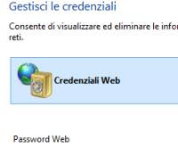 Internet Explorer gestione password