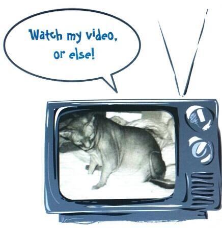 YOGI TV