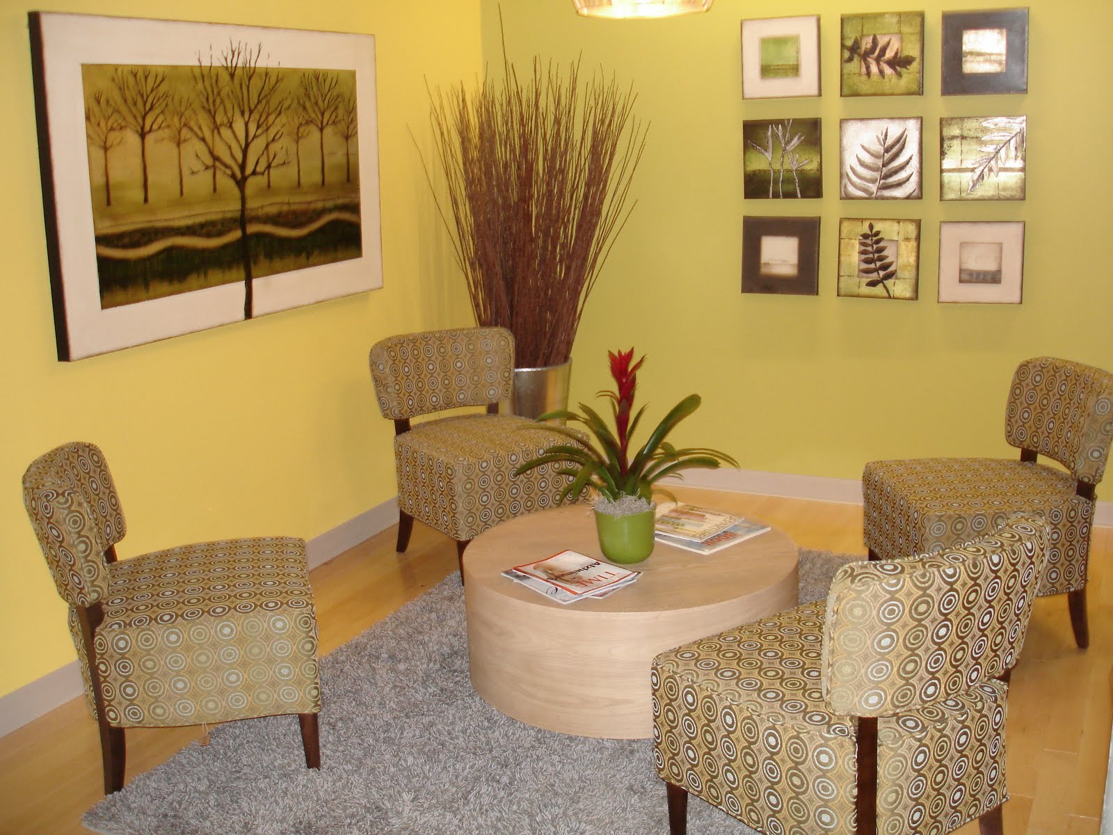 PDI Plants Blog New Indoor Office Plant Designs For The