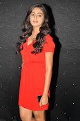 Glamorous Actress Sana Photo shoot gallery-thumbnail-18