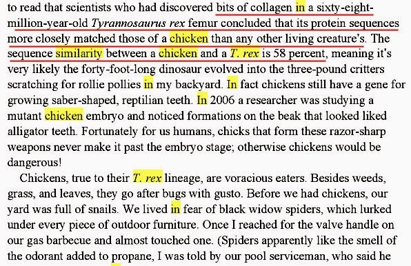 How are chickens related to humans?