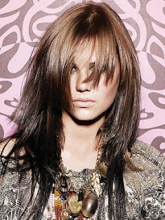 new long hairstyle 2012 ideas