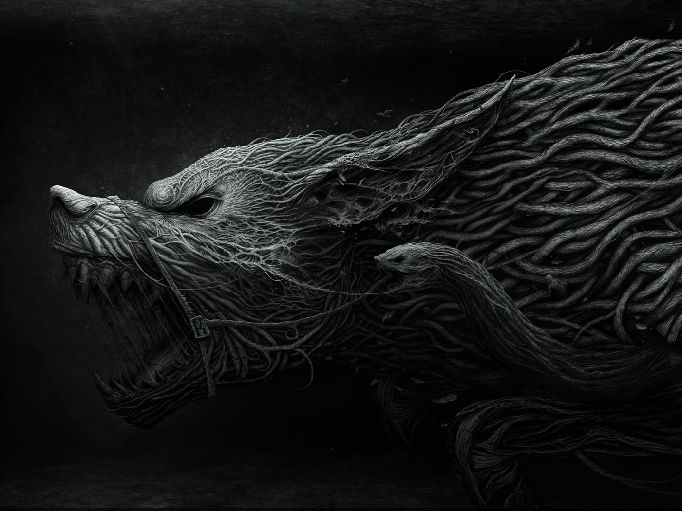 Hd wolf and snake wolf and snake voltagebd Image collections